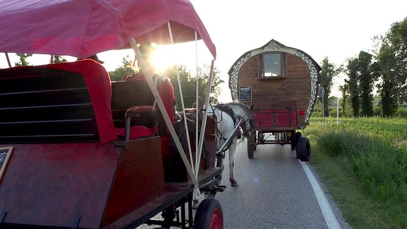 Immagine dei carri degli Equinauti - Donne Luce Alice di macrina Binotti